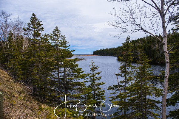 23-05-2019 048 Cabot Trail